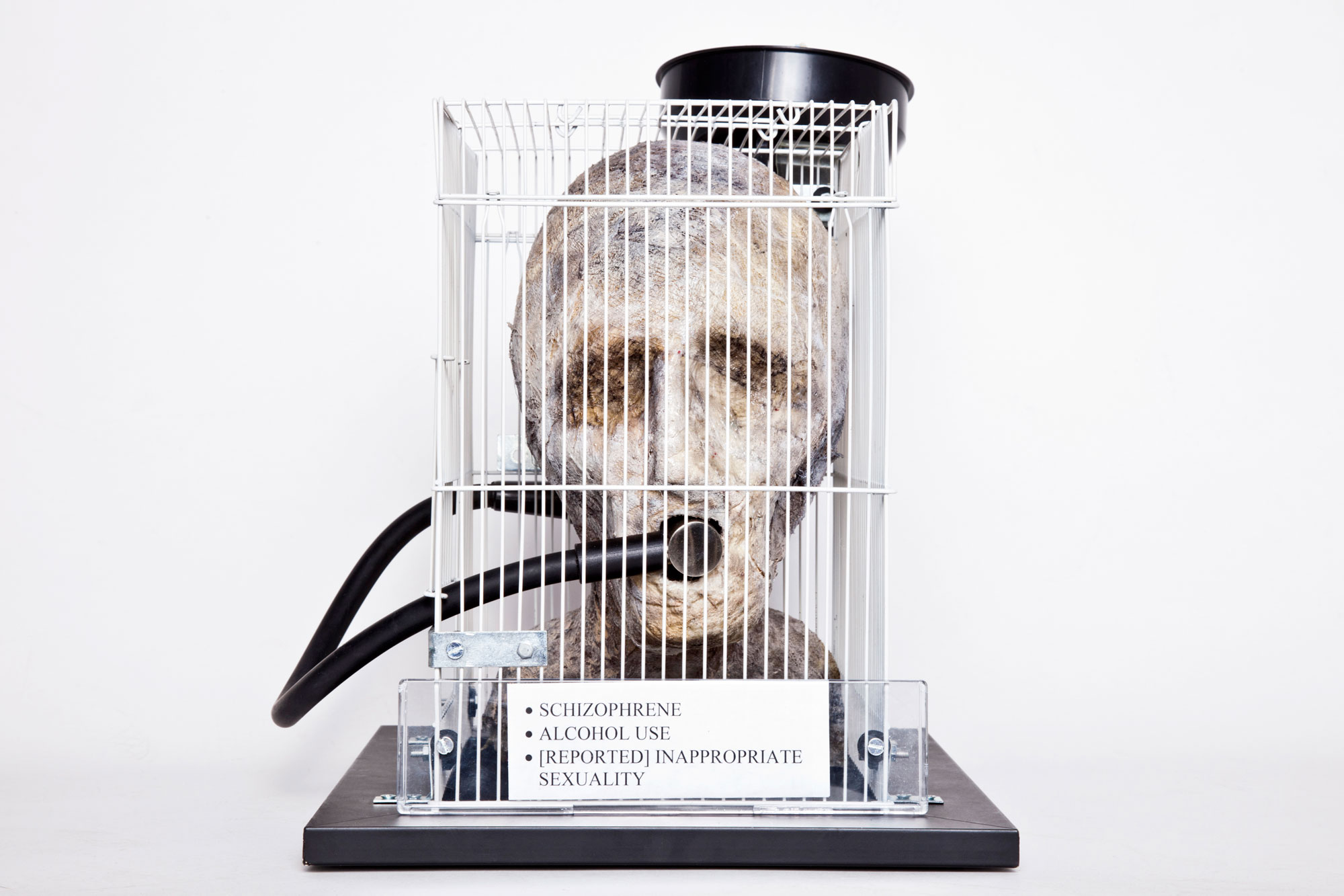 """Front image of The Gaze sculpture: patient head is located inside a rat's cage with tube connecting it's mouth to a black funnel. The funnel is overflowing with brightly coloured psychiatric medications. The """"patient"""" stares straight ahead, expressless, it's eyes are only dark indentations in the sculpture. The funnel in its mouth renders it speechless. There are 3 labels on the front of the cage: SCHIZOPRHENE; ALCOHOL USE; [REPORTED] INAPPROPRIATE SEXUALITY"""